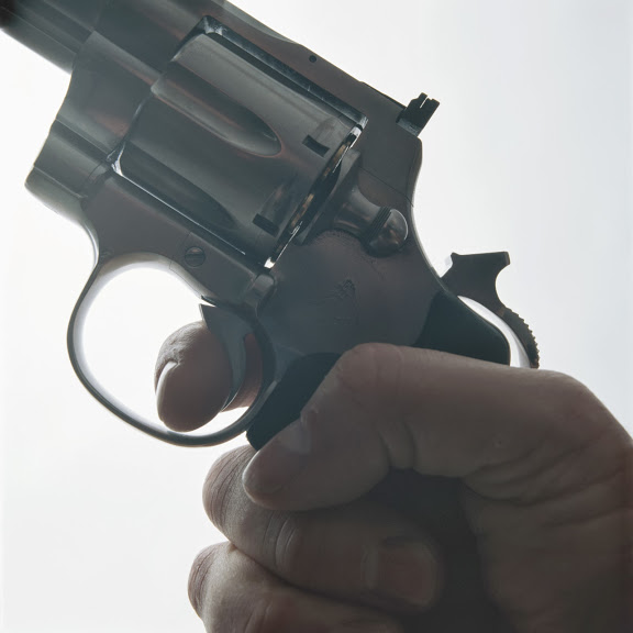 Discharging a Firearm in the City of Los Angeles is a Serious Offense