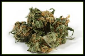 Arrested for Sending Marijuana Through the Mail in California?